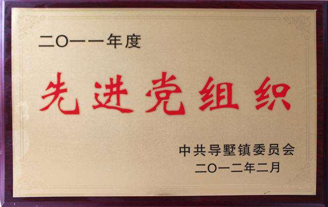 2011年度先进党组织